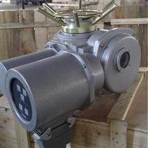 DZW250+WKDZW阀门电动装置