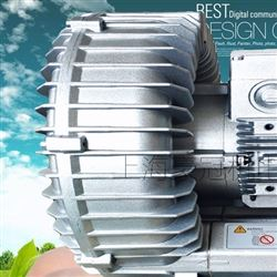 蔬菜清洗机配套高压气泵/旋涡风机