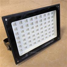 上海亚明LED投光灯ZY609 100W满天星