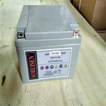 索润森胶体电蓄电池