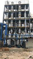 化工废水蒸发器 结晶器