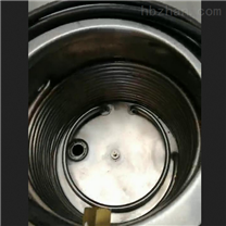 循环泵GDSZ-100L-10