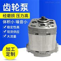 微型液压耐磨高压 双向齿轮泵