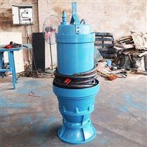 铸铁潜水轴流泵厂家
