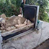 HLPG-20-3动物尸体焚化炉 宠物高温焚烧炉
