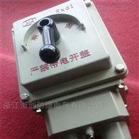 BHZ51-10-3三相电机防爆转换开关