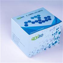 生孢梭菌ATCC7955