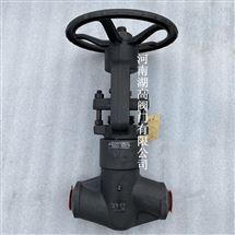 J61Y-3500LB美标锻钢截止阀