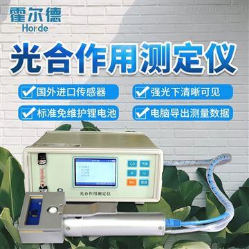 HED-GH10植物光合作用仪