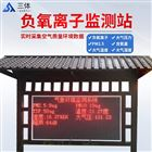 ST-FY06大气负氧离子监测仪
