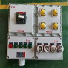BXS-T工地防爆動力檢修箱,帶無火花插銷380V/220