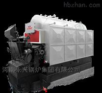 2吨卧式链条炉排生物质热水锅炉