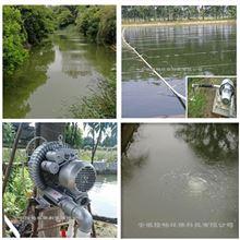 LC鱼塘/鱼池水底曝气增氧旋涡泵/漩涡曝气泵