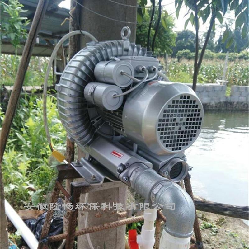 鱼池/养鱼塘增氧曝气旋涡泵/水底漩涡曝气泵