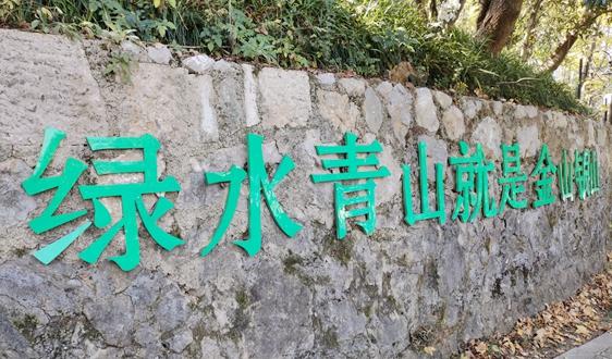 生态环境部:刑法修正案(十一)草案正在审议 涉环保