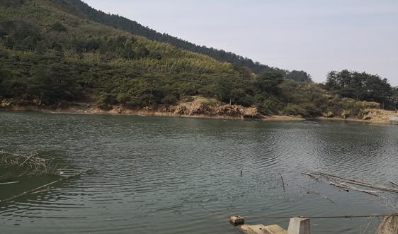 关于印发《东莞市污水排入城镇污水管网管理办法(试行)》的通知