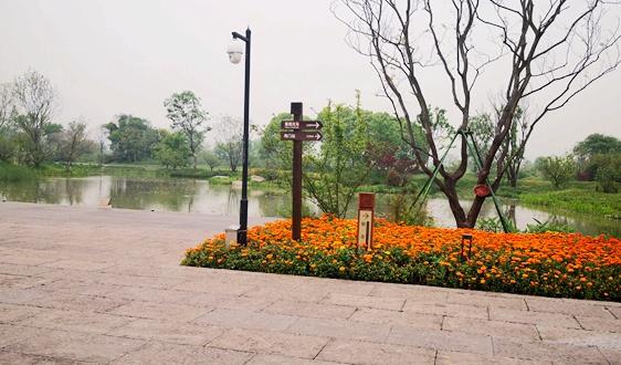 天津:年底将运行13座生活垃圾处理厂 无害化处理率98%以上