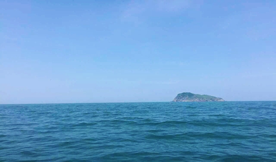 2019海水利用报告发布:全国海水淡化日工程规模近1574吨