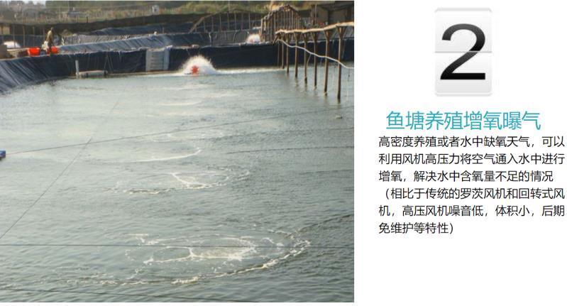 厂家3KW高压风机漩涡气泵 注塑机高压漩涡鼓风机示例图13