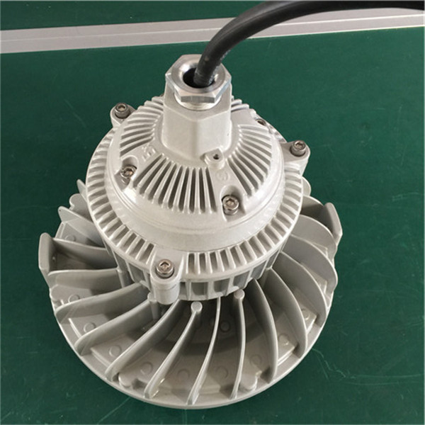 <strong><strong><strong><strong><strong>防爆低顶灯50W 防爆照明安全灯</strong></strong></strong></strong></strong>