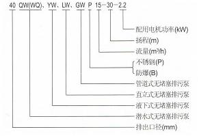WQP<strong>不锈钢潜水排污泵</strong>型号意义