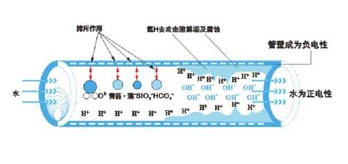 內磁水处理器图