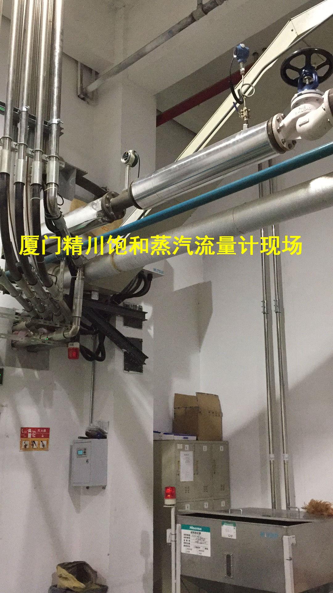 皮革厂蒸汽流量计